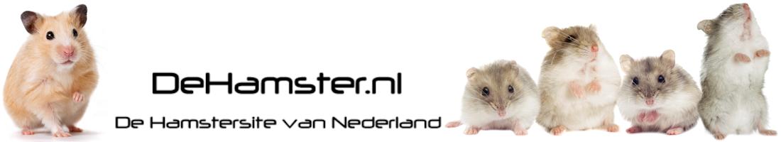 DeHamster.nl